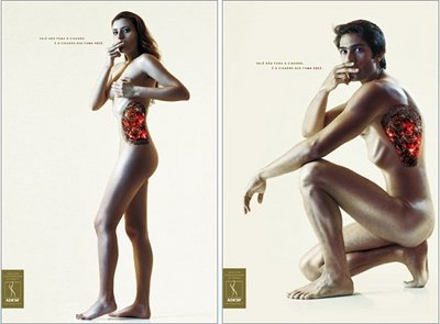 A poster uses naked bodies to illustrate just where smoking causes the most damage.