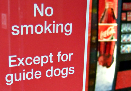 No smoking .... except for guide dogs.