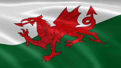 The Welsh Flag: A red dragon on a white and green background.