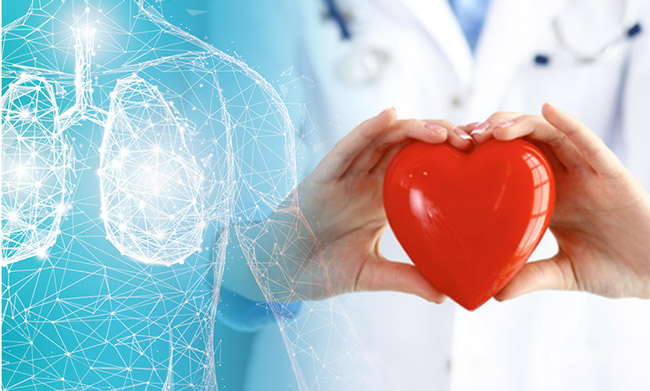 Man holds heart next to image of body.