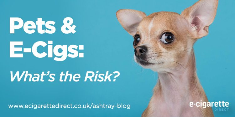Pets and vaping - What are the risks