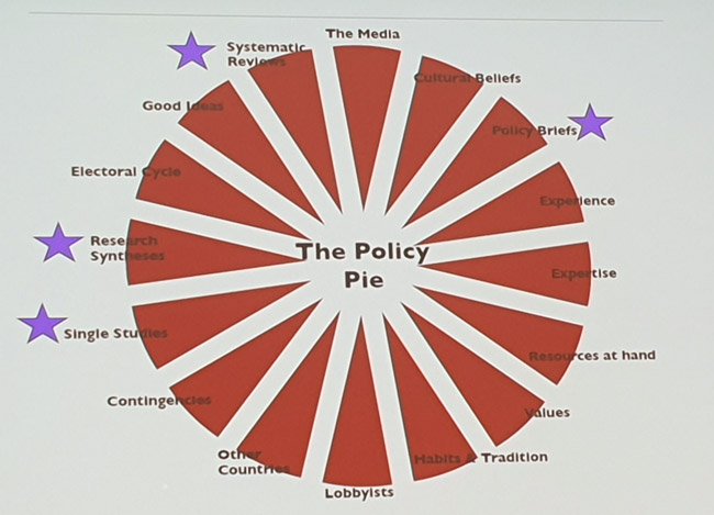 Pie chart showing the different factors that affect policy.